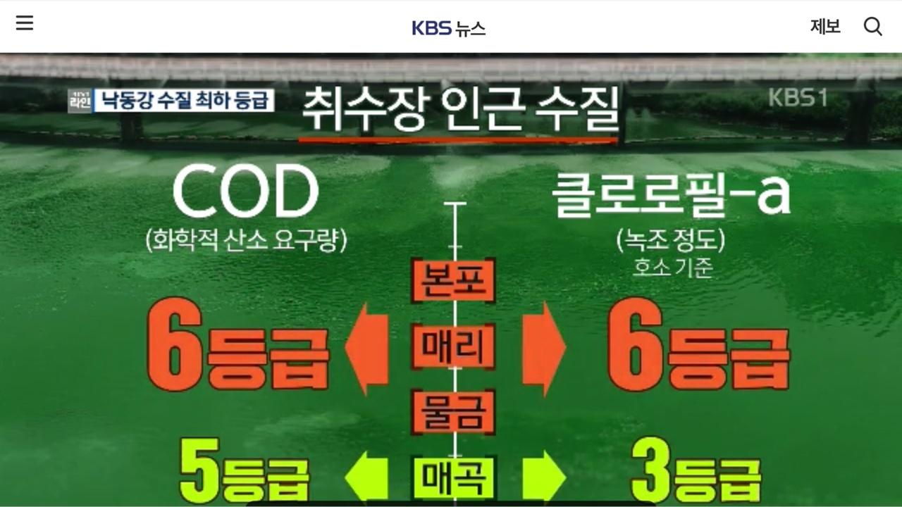 낙동강의 수질이 5~6등급 최악으로 치달았다는 KBS뉴스 보도.
