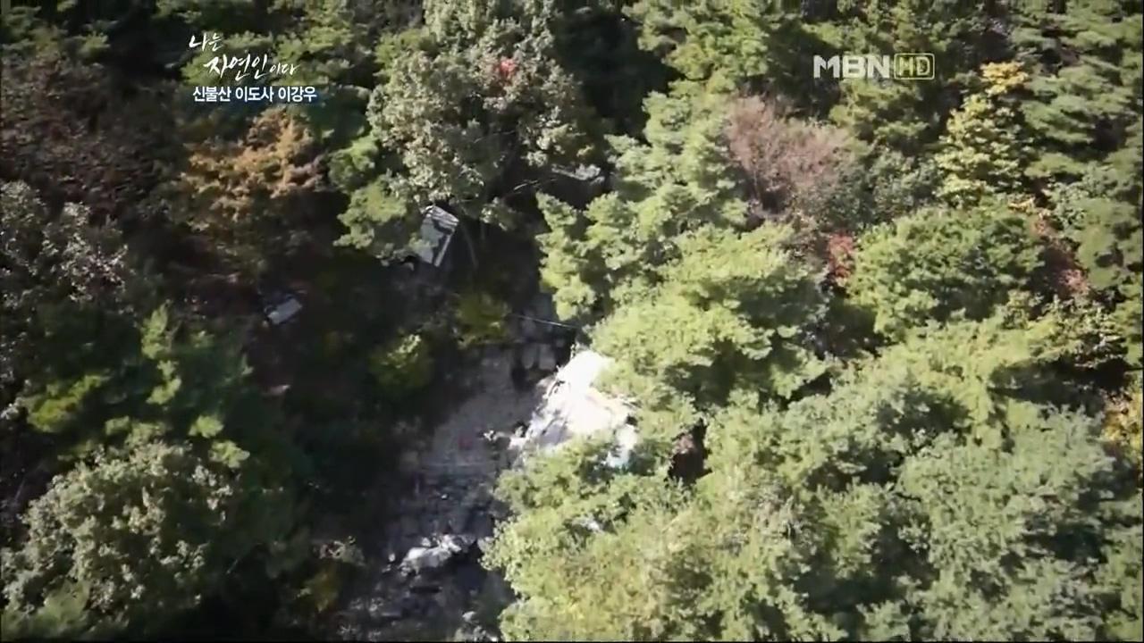 MBN <나는 자연인이다> 캡처.