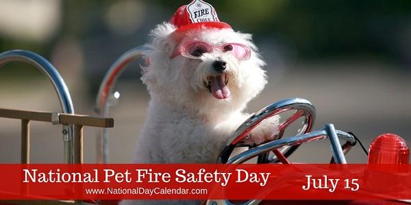 매년 7월 15일 개최되는 '미국 애완동물 소방안전의 날(National Pet Fire Safety Day)' 캠페인 사진 (사진: NationalDayCalendar.com)