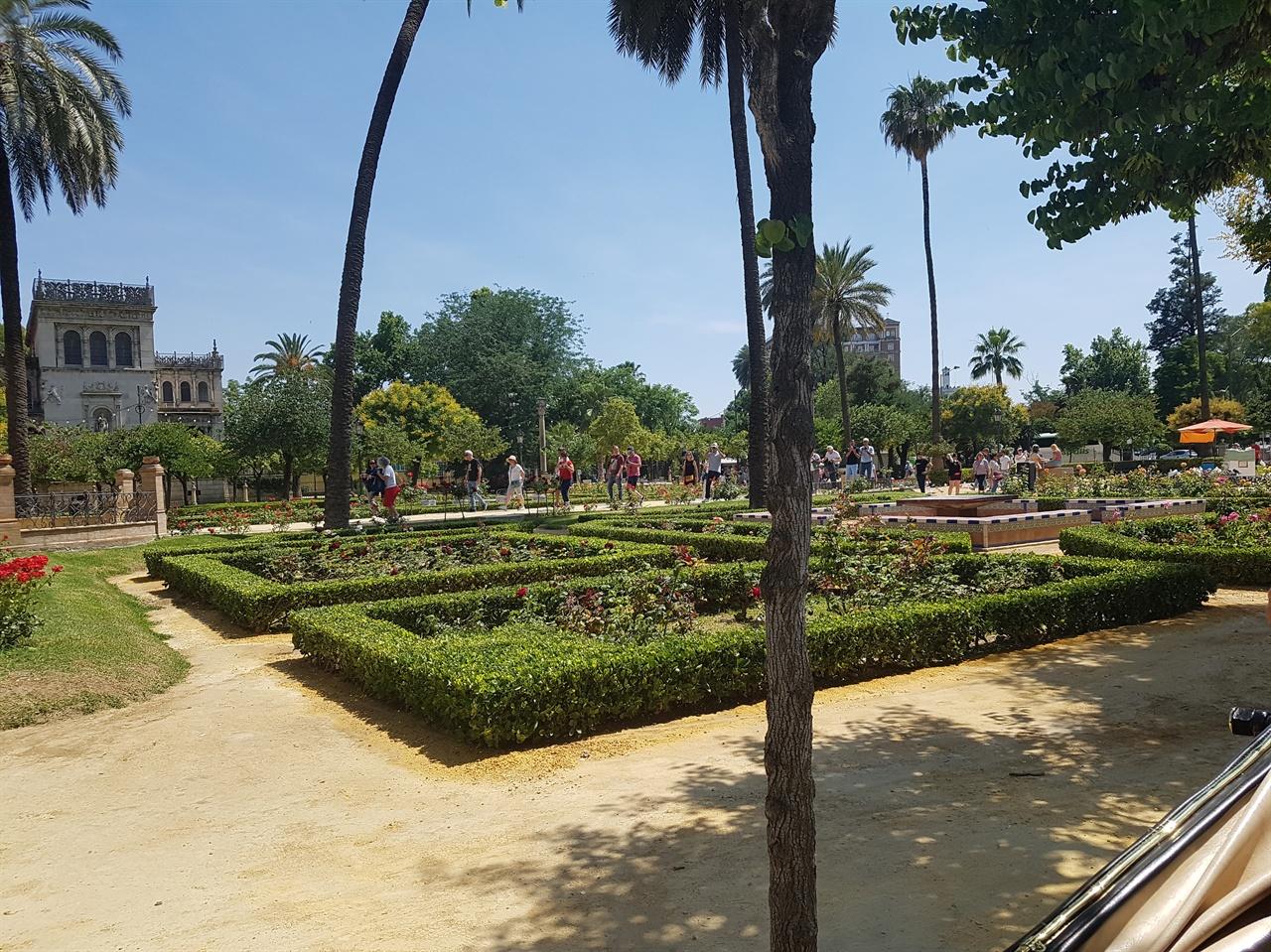 마리아 루이사 공원. 세비야 시민들의 휴식공간으로 아름다운 정원이 참 보기 좋았습니다. 고고학박물관, 토속박물관이 있고, 과달키비르 강가 쪽에는 아쿠아리움도 있습니다.
