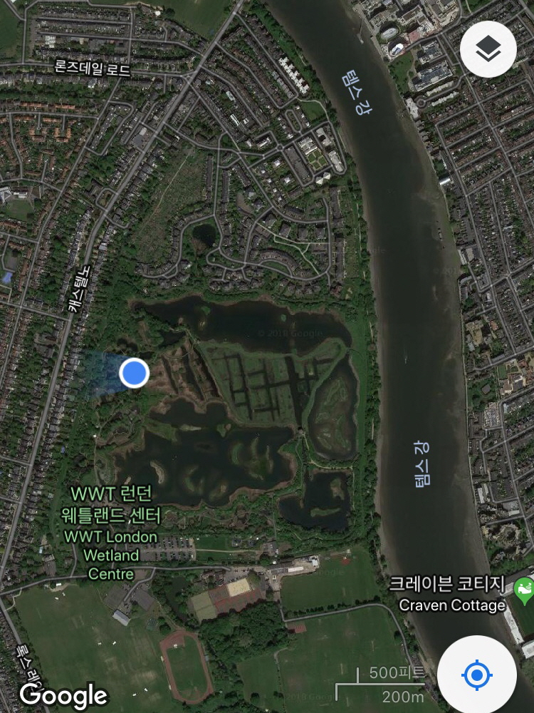 습지센터 구글 지도 .