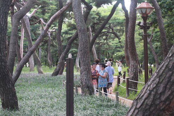 경주 황성공원 시민운동장 뒷편 맥문동 군락지에서 시민들이 사진찍는  모습