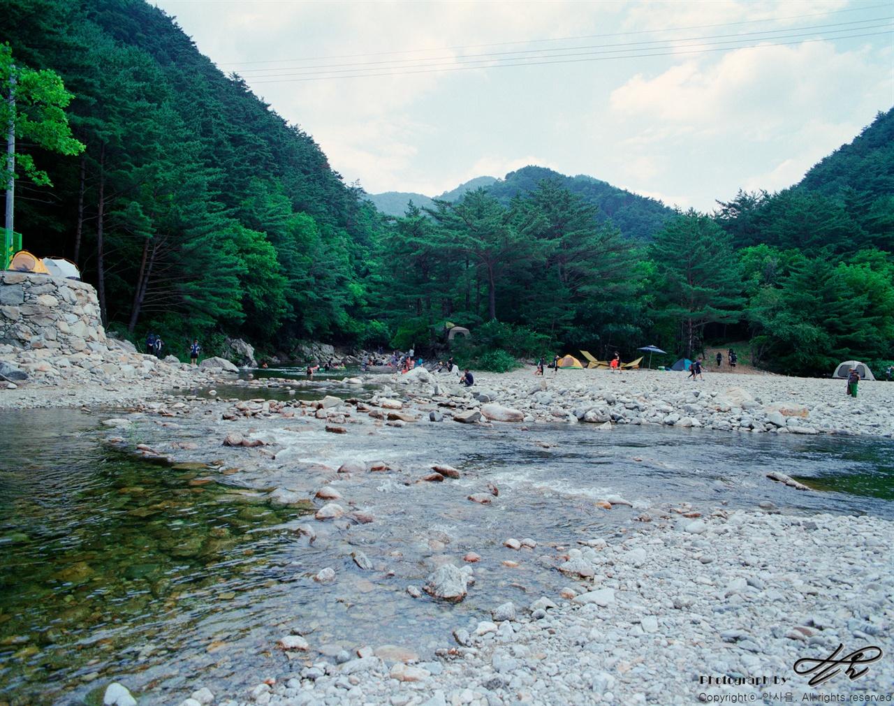 아침가리계곡 (6*7중형/Portra160)보이는 곳은 아침가리계곡의 초입으로 방태천과 만나는 곳이다. 극심하게 가물었음에도 불구하고 물이 꽤나 많이 흐르고 있었다.