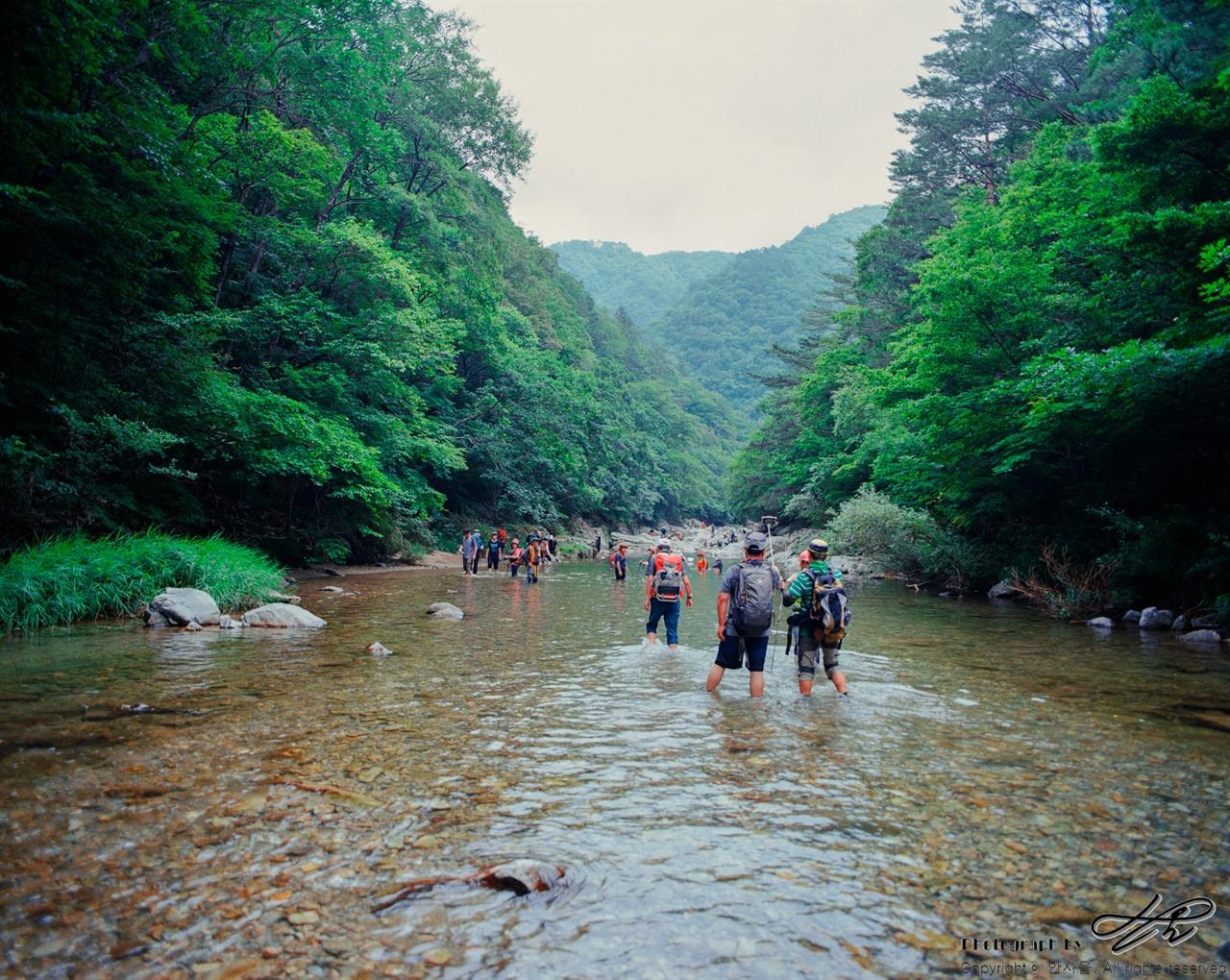 물길로 걷는 사람들 (6*7중형/Portra160)폭염이 기승을 부려도 이곳에서 물길을 걸으면 몸이 으슬으슬 떨릴만큼 서늘하다.