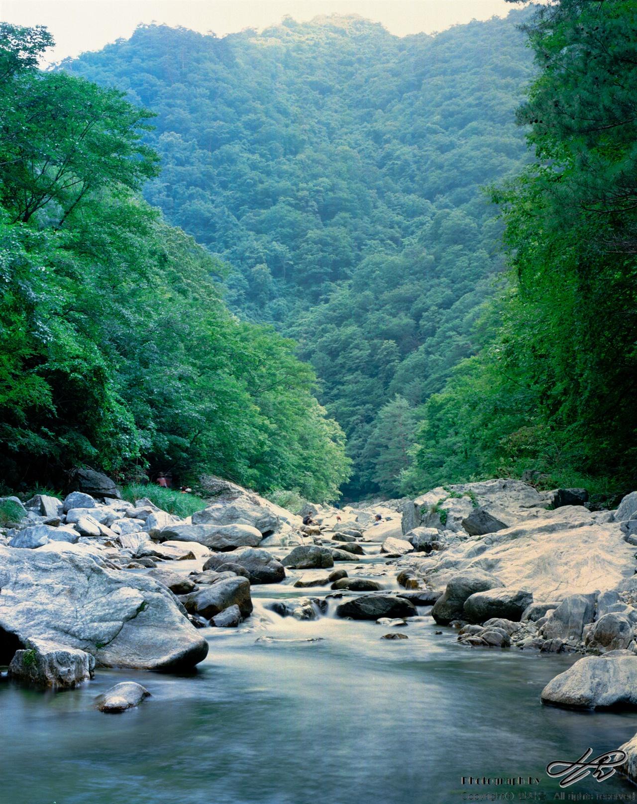 아침가리계곡 (6*7중형/Ektar100)방태산을 뒤로 하여 힘차게 내려오고 있는 아침가리계곡의 물