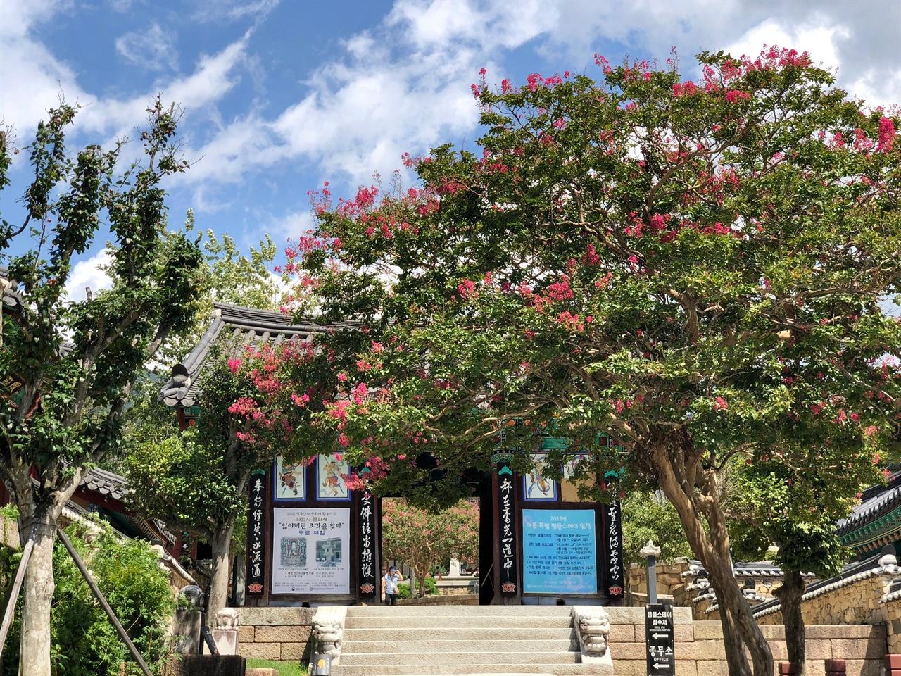 화엄사 금강문 앞 배롱나무