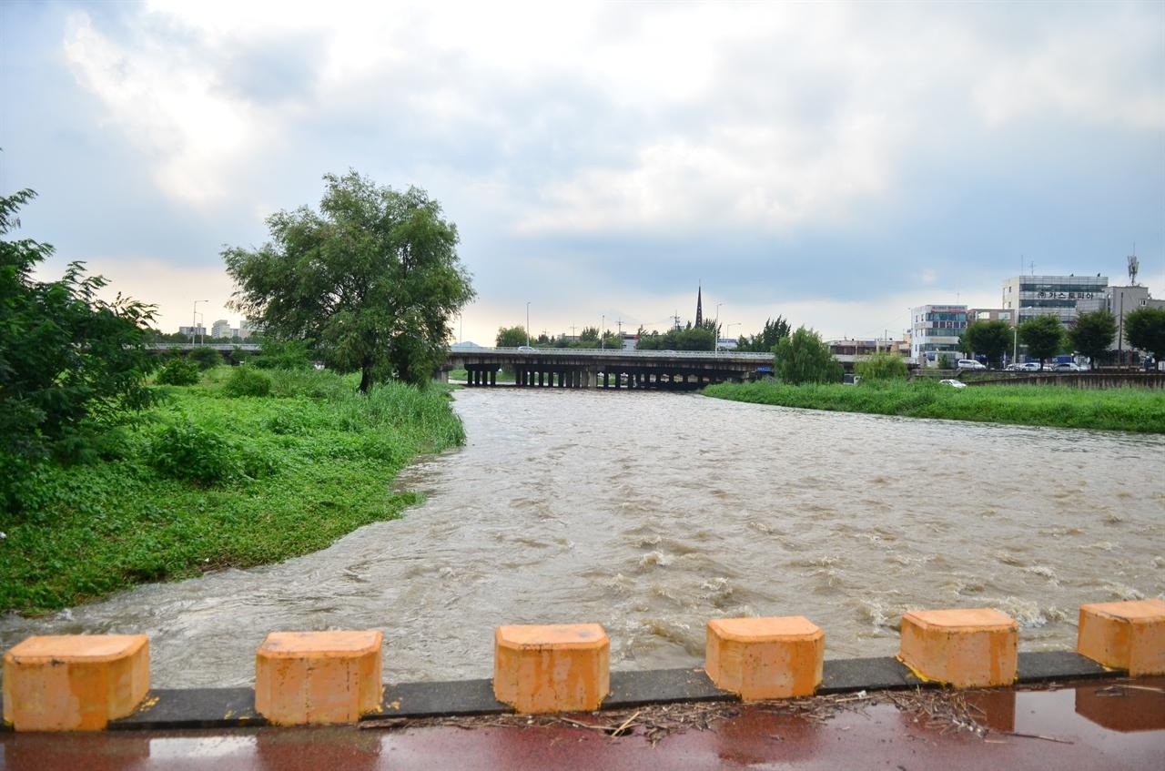비로 물이 불어난 대전천 .