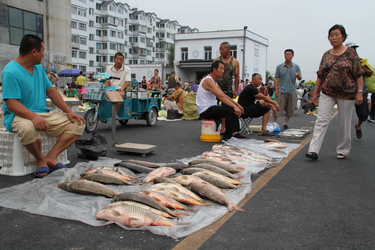 압록강 물고기 중국 새벽 시장에 나온 압록강에서 잡은 물고기