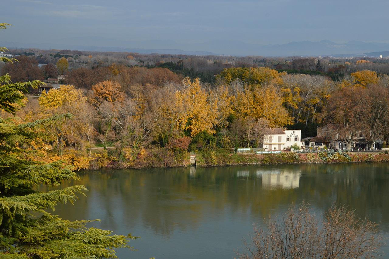 론 강. 공원의 정상에서 보면 론 강의 강줄기가 시원스럽게 펼쳐진다.