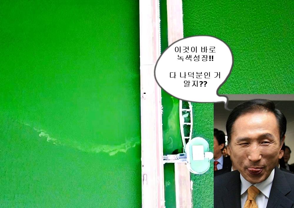 '조류 대발생이라는 녹색성장을 이룩한 이명박에게 찬사를!!' 집회에 참가한 이들이 이런 피켓을 만들어 들었다.