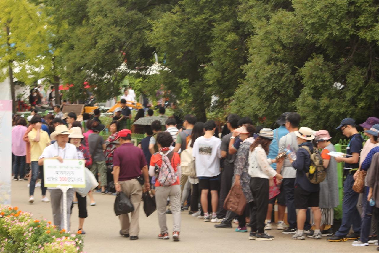 배추씨 모종과 화분을 받기 위해 길게 늘어선 모습 행사장에서는 시민들에게 무료로 화분과 배추씨를 나눠주는 행사를 가졌다.