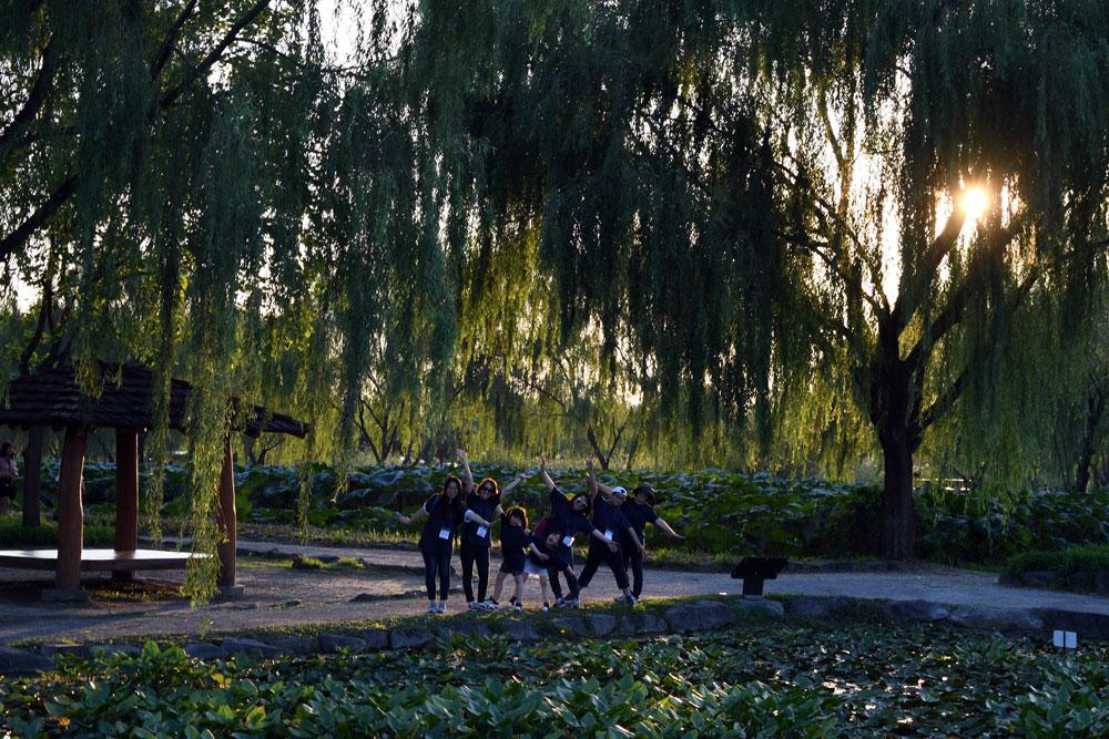연꽃과 능수버들이 아름다운 충남 부여군 궁남지를 찾은 참가자들이 사진을 찍고 있다.