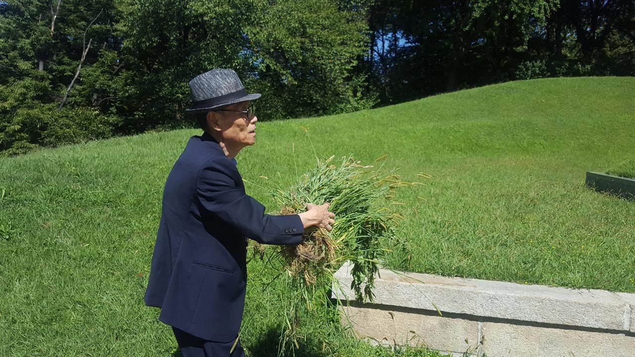 임시정부 선열 묘역의 잡초들을 직접 옮기고 있는 차영조씨