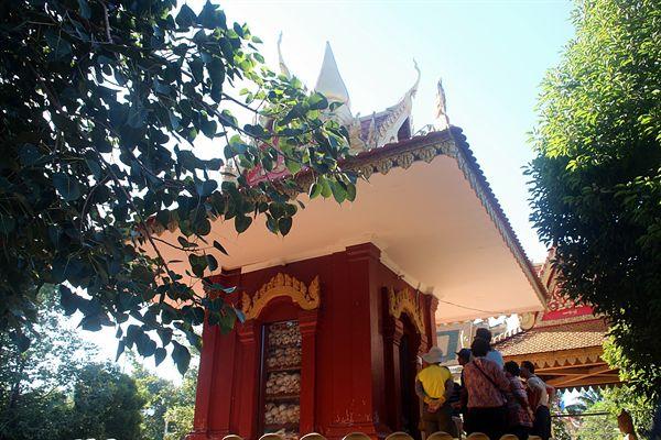 왓트마이 불교사원 유리 탑 유골 안치 모습(너무 잔인한 모습으로 죽여 가까이서 촬영을 못하고 멀리서 촬영함)