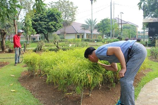 ▲ 이정기 사천시다문화통합지원센터장이 인도네시아 국립향료·약용식물연구소에 조성된 식물들을 살피고 있다.
