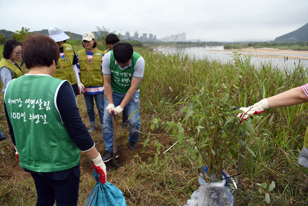 4대강 재자연화를 위한 금강 버드나무 방생법회에 참가한 남성들이 땅을 파고 여성들은 나무를 심고 물을 줬다.