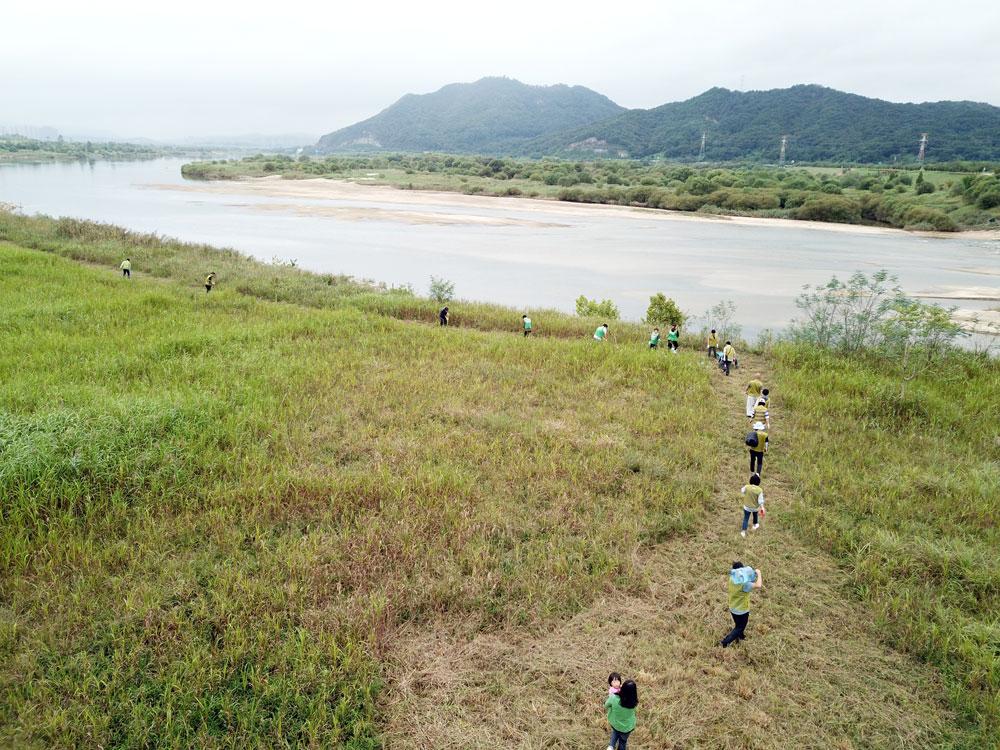 금강과 미호천이 만나는 세종시 합강리 강변에서 나무 심기가 진행됐다.