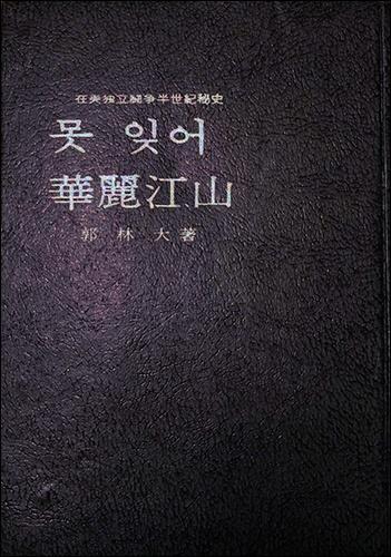 못 잊어 화려강산 재미투쟁반세기사 《못 잊어 화려강산》 곽임대 지음