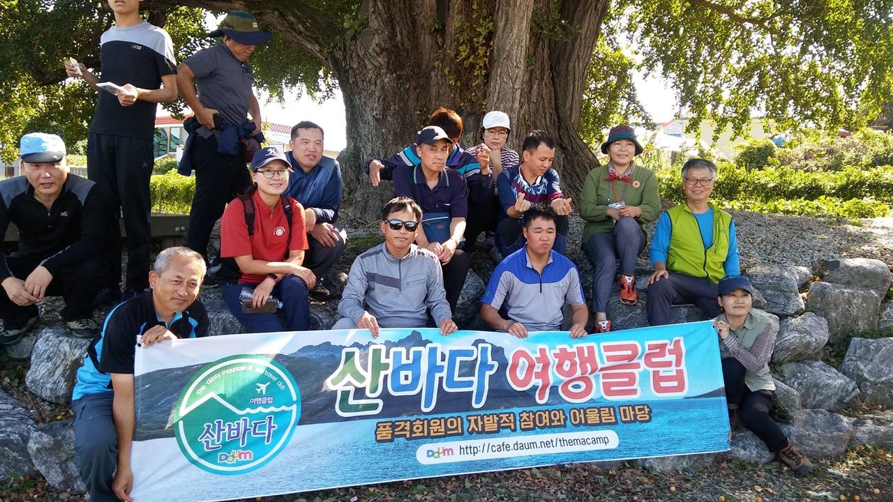은행 나무 앞에서 산바다여행클럽 회원과 함께0하는 청년들이 사진을 찍었다.