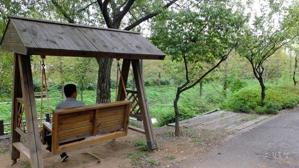 아파트가 모여있는 도심 주거지를 지나는 시흥시 정왕동의 하천.