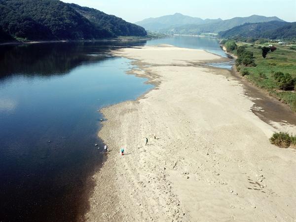 백제보의 수위를 낮추면서 한국수자원공사는 인력을 동원하여 미처 피하지 못한 어패류를 강물에 넣어주고 있다.