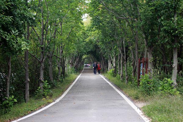 경주 산림환경연구원 내부 숲길 모습