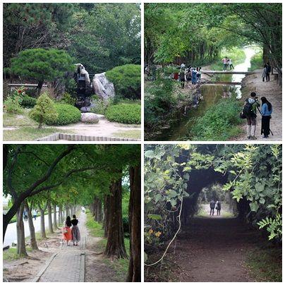 경주 산림환경연구원 내부 분재관,철쭉류 품종 전시원,꽃터널 모습