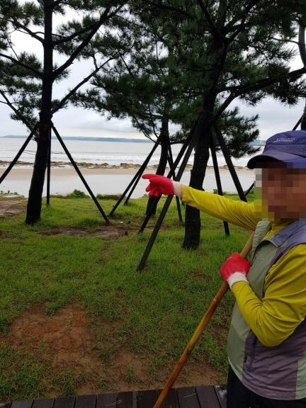 태풍 '콩레이'로 잔해가 가득한 해변가