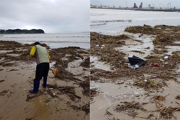 태풍 '콩레이'로 밀려 나온 잔해들.