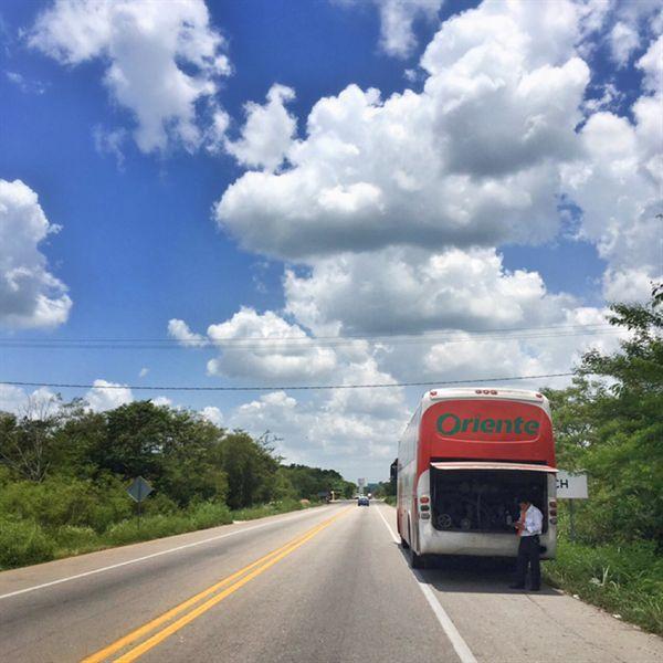 땡볕 고속도로에 멈춰선 버스. 전화기의 전파가 터지지 않자 버스기사도 당황하기 시작했다.
