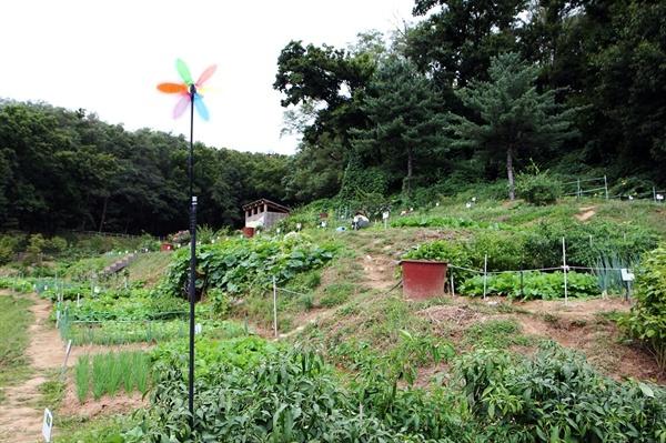서울 은평구 연서로에 위치한 '향림도시농업체험원'
