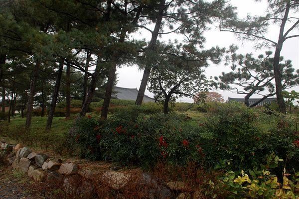 경주 얼굴무늬 수막새가 출토된  영묘사지(현재는 흥륜사지로 불림)