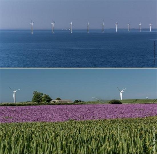 삼쇠섬 인근 바다에 설치된 해상풍력발전기와 섬 안 들판에서 돌아가는 육상풍력발전기들.