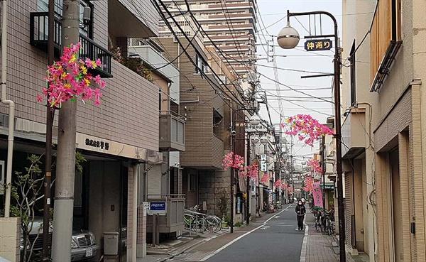 내 숙소가 위치한 도쿄 다이토구 이리야라는 동네. 봄이어서 그런지 동네 전봇대, 가로등에 화사한 조화를 꽂아놓았다.