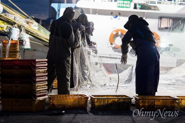새벽 5시, 한림항으로 나갔다. 경매장에는 가격 매겨지기를 기다리는 상자들이 빼곡하다.