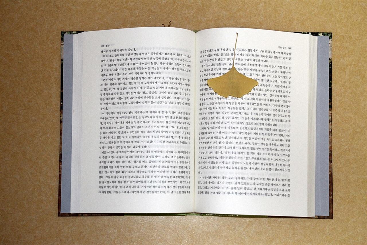 옛 추억이 어린 은행나무잎 책갈피 모습