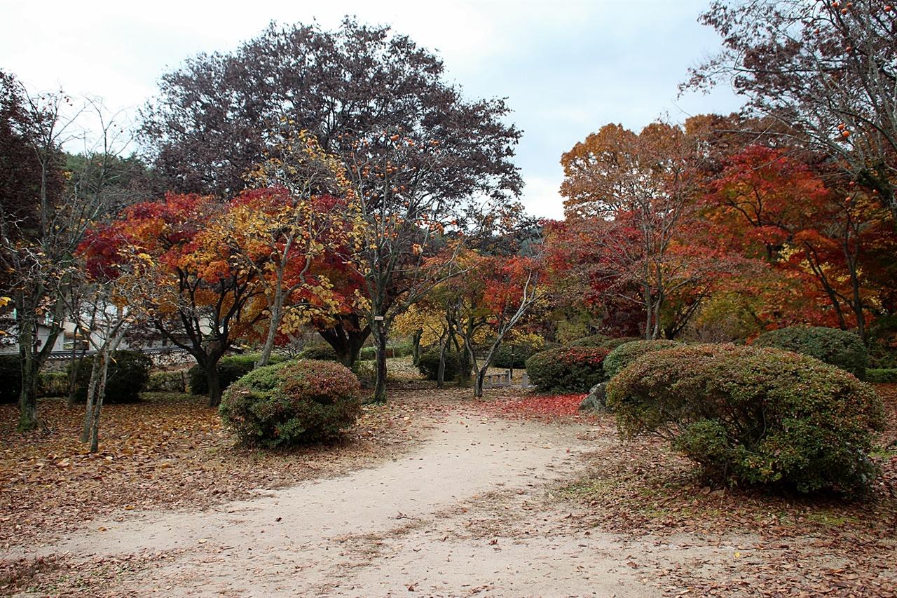 낙엽이 떨어지고 막바지 가을 단풍이지만 그래도 아름다운 포석정지