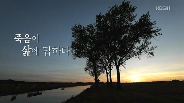 KBS스페셜 '죽음이 삶에 답하다'