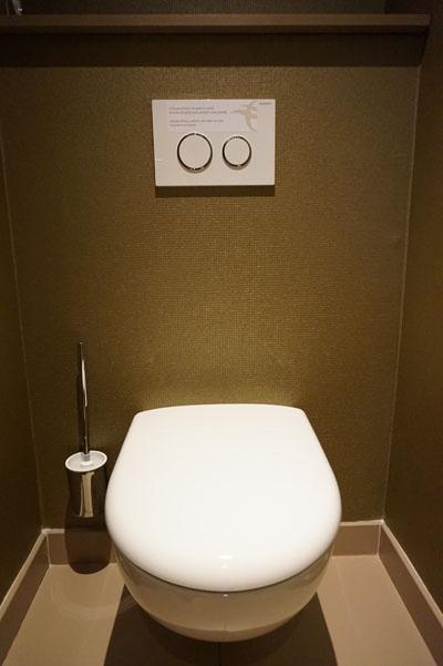 플러쉬 버튼이 사람 허리 높이의 깨끗한 벽에 따로 설치되어 있는 파리의 변기