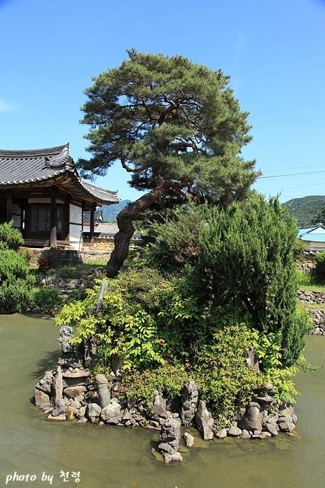 소나무와 석가산 기품 있는 노송과 기묘한 석가산은 무기연당에서 뺄 수 없는 대표 풍광이다.
