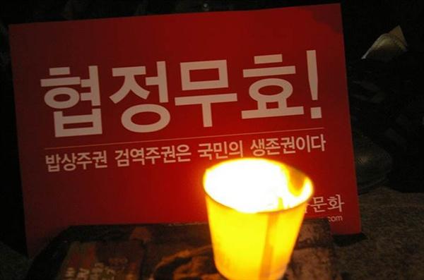 2008 광우병 촛불집회에 참가한 김신효정