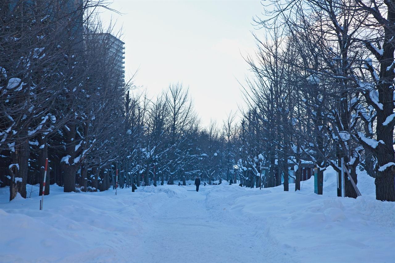 눈 쌓인 홋카이도 거리를 걷다보면 '인간은 본질적으로 고독한 존재'라는 생각이 든다.