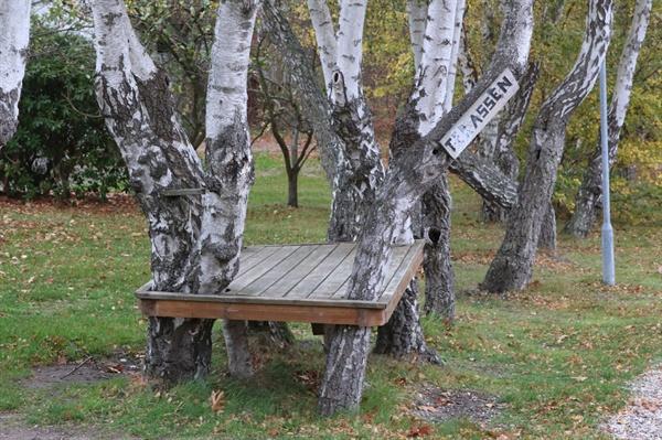 학생들이 직접 만든 평상 학교 곳곳에는 학생들의 흔적이 많이 남아 있다. 그 중에 하나인 평상. 나무와 조화를 이뤄 잘 만들어졌다.