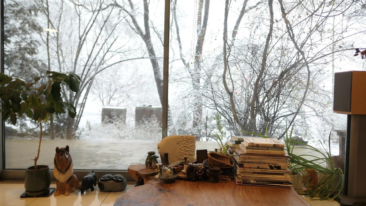 정원에는 나무, 집에는 책