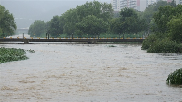 폭우 내린 후 탄천  폭우 내린 탄천은 때론 도보교가 잠긴다.