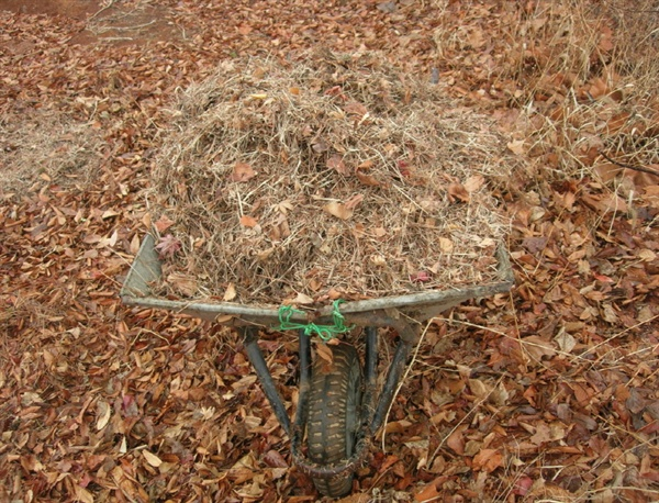 가벼운 낙엽도 모으면 무겁지만 티끌만한 흙으로 돌아간다
