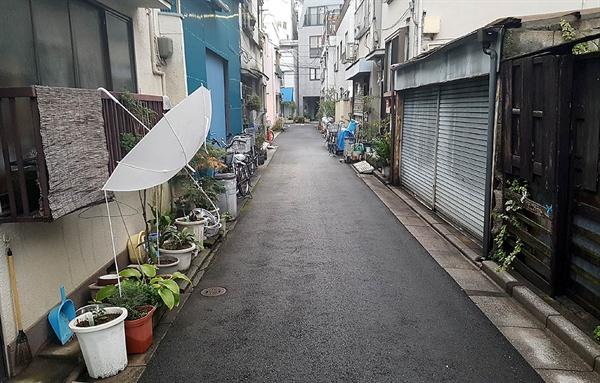한겨울의 도쿄 주택가 뒷골목 풍경. 집집마다 화분을 내놨지만 통행에 전혀 불편을 주지 않는다.