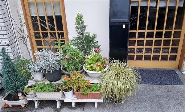 일본 주택가의 한 가정집 앞에 화분들이 놓여져있다.