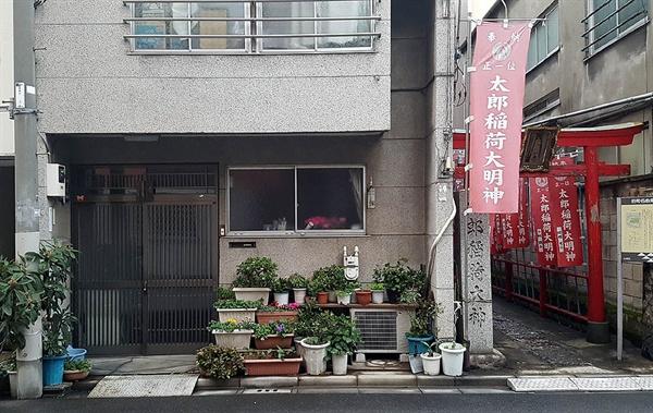 일본 주택가의 한 가정집 앞에 화분들이 놓여져있다. 오른쪽에 신사 입구가 보인다.