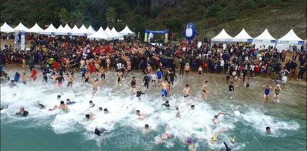 서귀포겨울바다 국제펭귄수영대회 서귀포겨울바다 국제펭귄수영대회에 참가한 관광객이 바다로 뛰어들고 있다.